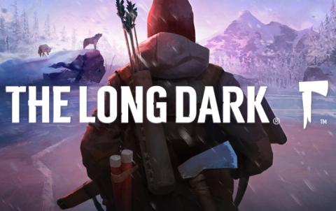 Скачать игру The Long Dark на пк через торрент бесплатно
