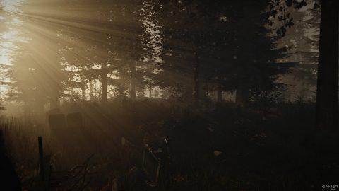 Скачать The Forest через торрент