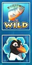 Wild и Scatter символы