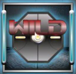 Дикий символ игрового автомата iBot
