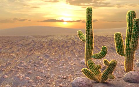 Слот Desert Kingdom в зеркале официального сайта казино Вулкан