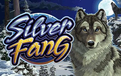Бесплатный игровой автомат Silver Fang в онлайн казино Вулкан Россия