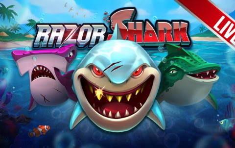 Слот Razor Shark в казино Riobet