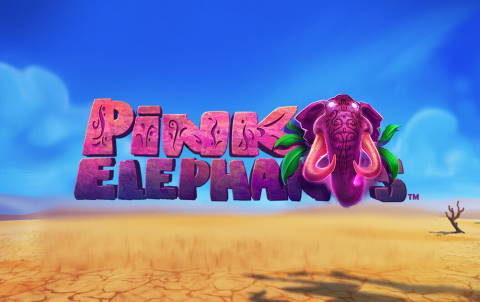 Слот Pink Elephants в игровом зале клуба Вулкан 24